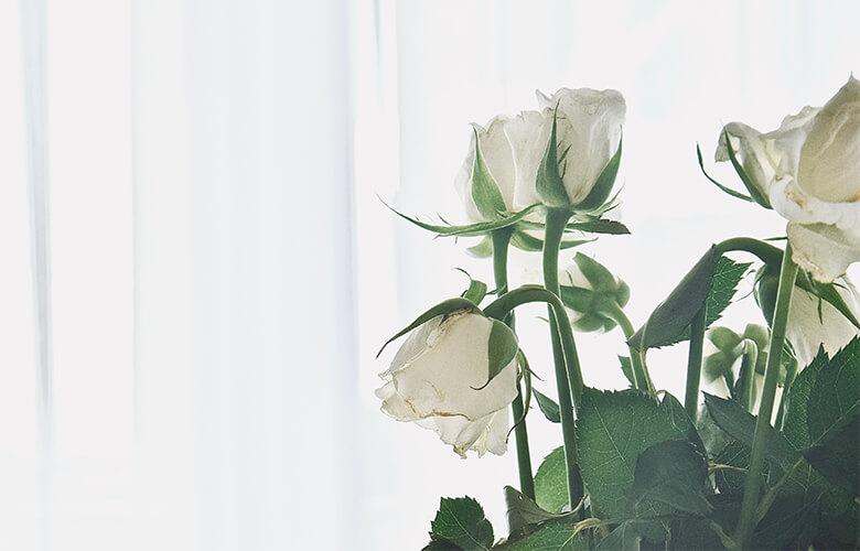 魔法の花瓶