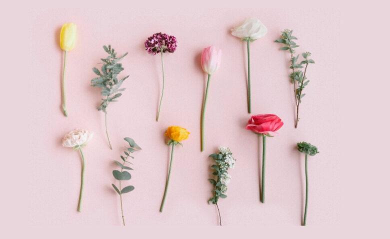 FLOWER定期便 花 種類