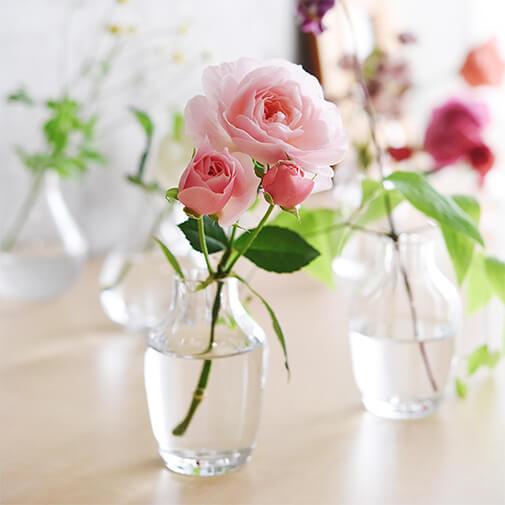 お花の定額制アプリ「ハナノヒ」 選べる